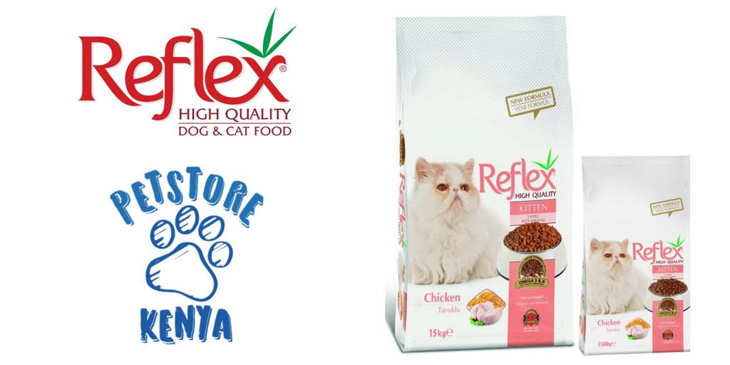 Immune Boosting Dry Cat Food